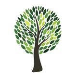 Silhueta da árvore de Geen isolada no fundo branco Vetor Fotos de Stock Royalty Free