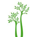 Silhueta da árvore isolada no fundo branco Imagens de Stock