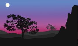 Silhueta da árvore na noite Fotos de Stock