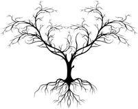 Silhueta da árvore sem a folha para você projeto Fotos de Stock