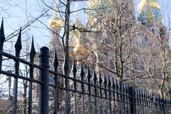 Silhueta da catedral do salvador no sangue através das árvores do parque em St Petersburg, Rússia imagem de stock