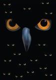 Silhueta da coruja no fundo da lua Fotografia de Stock Royalty Free