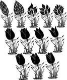 Silhueta da flor Fotografia de Stock