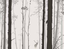 Silhueta da floresta com cervos Foto de Stock