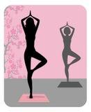 Silhueta da ioga praticando da jovem mulher ilustração royalty free