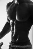 silhueta da Lado-vista do homem quente descamisado 'sexy' atlético muscular novo que levanta mostrando o corpo de esporte com Abs Imagens de Stock