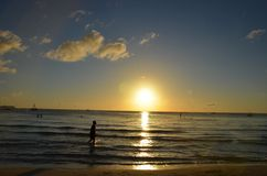 Silhueta da menina que dá uma volta na praia para o por do sol Imagem de Stock Royalty Free