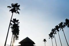 Silhueta da mesquita e das palmeiras no céu azul Imagens de Stock