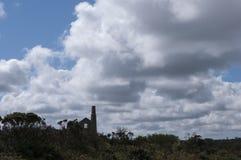 Silhueta 2 da mina de Hallenbeagle Imagem de Stock Royalty Free