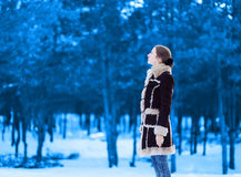 A silhueta da mulher bonita olha acima, no inverno Imagens de Stock Royalty Free