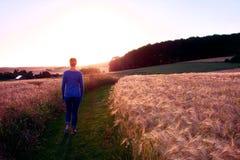 Silhueta da mulher que anda um trajeto do cascalho no por do sol contra o sol imagens de stock