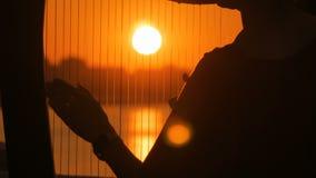 Silhueta da mulher que joga a harpa no por do sol video estoque