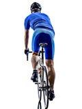 Silhueta da opinião traseira da bicicleta da estrada de ciclismo do ciclista fotografia de stock royalty free