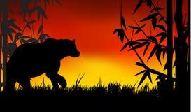 Silhueta da panda Imagem de Stock Royalty Free
