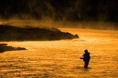 Silhueta da pesca Flyfishing do homem na luz solar dourada do rio Imagens de Stock