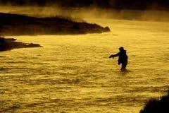 Silhueta da pesca Flyfishing do homem na luz solar dourada do rio Foto de Stock