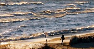 Silhueta da pessoa na praia imagens de stock