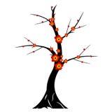 Silhueta da árvore da flor de cerejeira Imagens de Stock