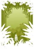 Silhueta da selva da beleza Fotografia de Stock