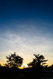 Silhueta das árvores entre o por do sol Foto de Stock