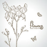 Silhueta das flores Fotografia de Stock
