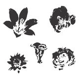 Silhueta das flores Ilustração Royalty Free