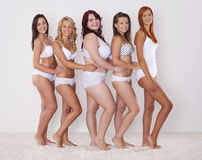 Silhueta das jovens mulheres Imagem de Stock Royalty Free
