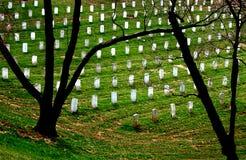 Silhueta de Arlington Fotografia de Stock