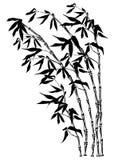 Silhueta de bambu Imagens de Stock