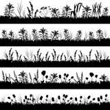 Silhueta de flores e de gramas do prado Imagens de Stock