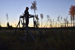 Silhueta de um caçador dos alces que está em uma torre da caça fotografia de stock