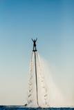 Silhueta de um cavaleiro da placa da mosca Fotografia de Stock Royalty Free