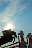 Silhueta de um cavalo Imagem de Stock Royalty Free