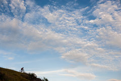 Silhueta de um ciclista do corta-mato que vai para baixo Foto de Stock Royalty Free