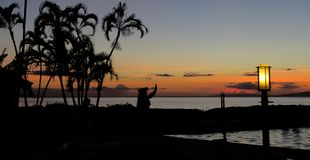Silhueta de um dan?arino havaiano do hula no por do sol com as palmeiras na praia, Lahaina, Maui, Hava? fotografia de stock royalty free