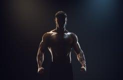 Silhueta de um lutador forte imagens de stock royalty free
