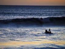 Silhueta de um surfista que olha o por do sol em Havaí Imagem de Stock