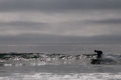 Silhueta de um surfista que trava uma onda fotos de stock