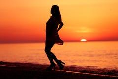 Silhueta de uma dança da senhora Imagem de Stock