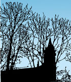Silhueta desobstruída da árvore do céu fotografia de stock royalty free