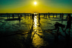 Silhueta do amor do verão Imagens de Stock