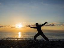 Silhueta do artista ou do especialista marcial masculino novo da ioga na praia durante o por do sol espetacular imagens de stock royalty free