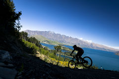 Silhueta do cavaleiro do Mountain bike em Queenstown Imagem de Stock Royalty Free