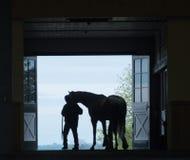 Silhueta do cavalo Fotografia de Stock Royalty Free