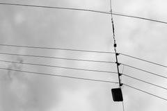 Silhueta do condutor da antena do eletricista fotografia de stock