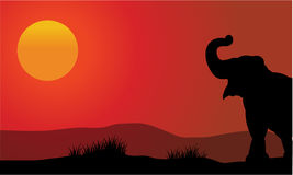 Silhueta do elefante no por do sol com sol Fotos de Stock Royalty Free