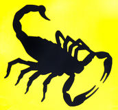 Silhueta do escorpião Fotos de Stock Royalty Free