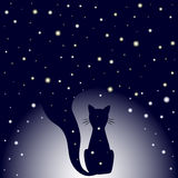 Silhueta do gato de assento na obscuridade - fundo azul do céu noturno com estrelas Fotografia de Stock