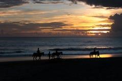 Silhueta do grupo de pessoas que tem a aventura da equitação em b Foto de Stock Royalty Free