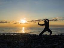 Silhueta do homem das artes marciais no céu do por do sol no fundo fotos de stock